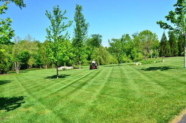 legjobb kerti traktorok